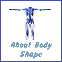 About Body Shape
